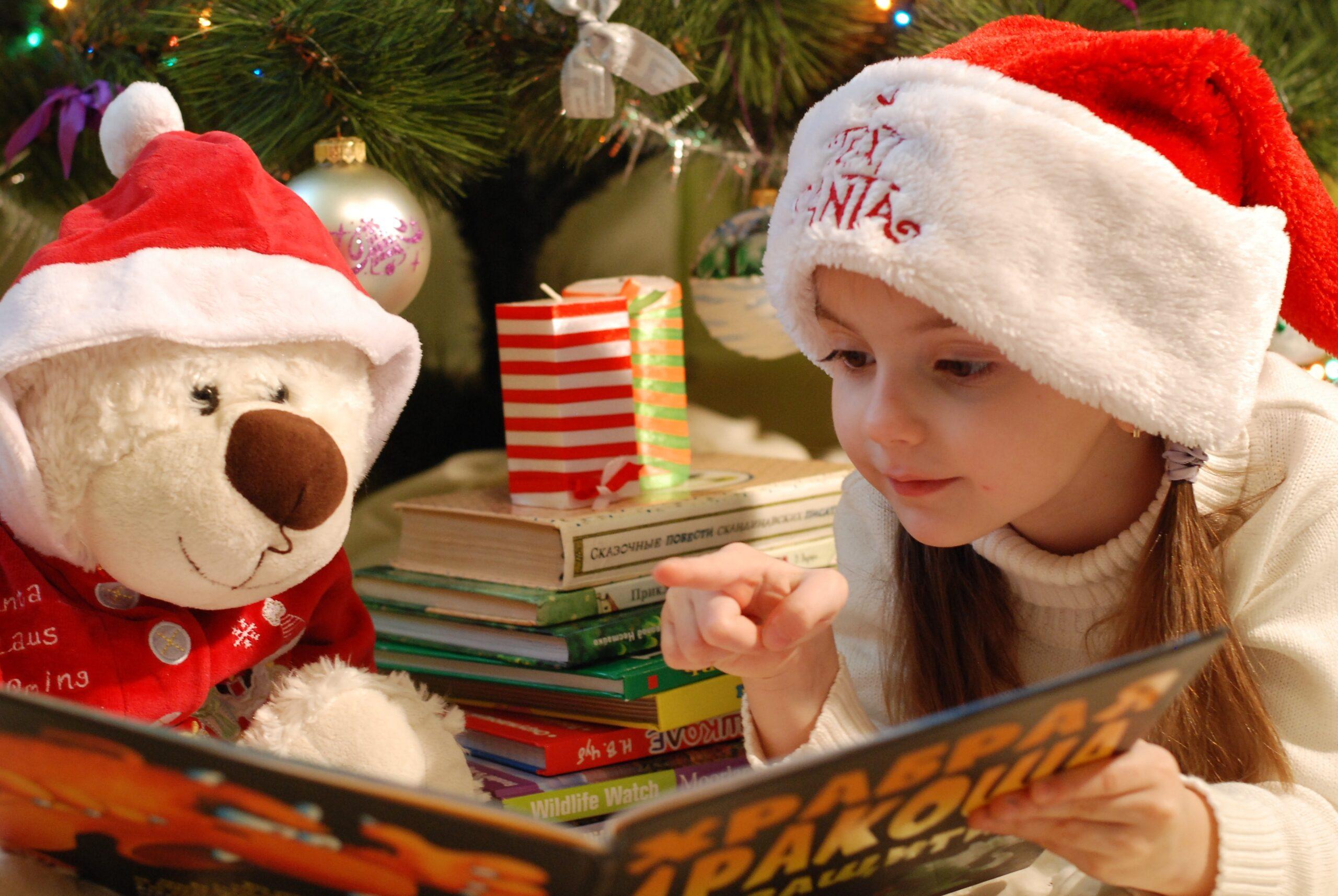 Red Deer Christmas Bureau Society